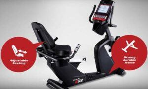 Sole R92 Recumbent Bike - comfy seat and strong frame
