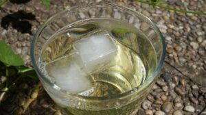 Save ice cubes for drinks and use an iceless cooler.