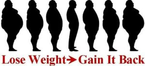 Many dieters lose weight and then gain it back.